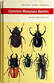 Common Malaysian Beetles - Vincent Weng-Yew Tung