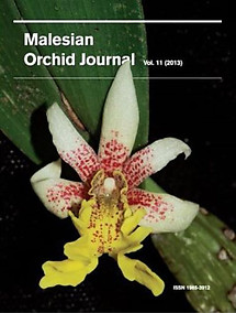 Malesian Orchid Journal Vol 11 (2013) - Andre Schuiteman (ed)