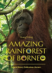 Amazing Rainforest of Borneo - Huang Yi-Feng