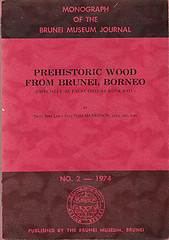 Prehistoric Wood from Brunei, Borneo - Tom Harrisson