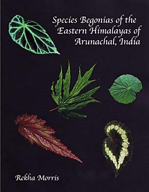 Species Begonias of the Eastern Himalayas of Arunachal, India - Rekha Morris
