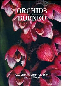Orchids of Borneo- Volume 1 - CL Chan, A. Lamb, JJ Vermeulen & JJ Wood
