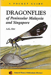 Dragonflies of Peninsular Malaysia and Singapore: A Pocket Guide - A. G Orr