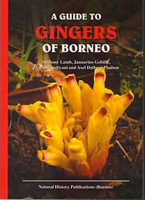 A Guide to the Gingers of Borneo - Anthony Lamb, Januarius Gobilik, Marina Ardiyani & Axel Dalberg Poulsen