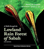A Walk Through the Lowland Rain Forest of Sabah - Elaine JF Campbell