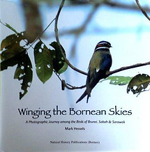 Winging the Bornean Skies: A Photographic Journey - Mark Hessels