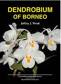 Dendrobium of Borneo - Jeffrey J Wood