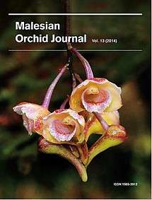 Malesian Orchid Journal Vol 13 (2014) - Andre Schuiteman (ed)