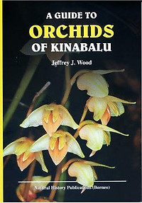A Guide to Orchids of Kinabalu - J.J. Wood