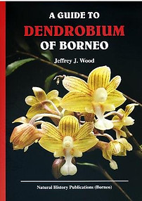 A Guide to the Dendrobium of Borneo - Jeffrey J. Wood