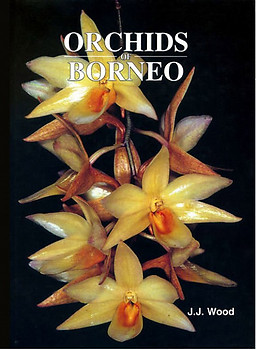 Orchids of Borneo- Volume 3 - JJ Wood