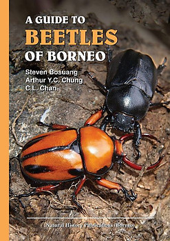 A Guide to Beetles of Borneo - Steven Bosuang , Arthur Y.C. Chung & C.L. Chan