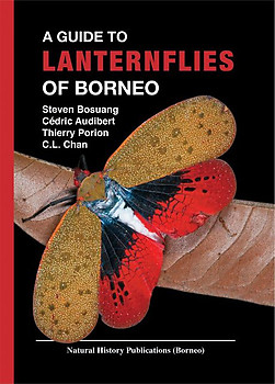 A Guide to Lanternflies of Borneo -Steven Bosuang, Cédric Audibert, Thierry Porion & C.L. Chan