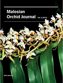 Malesian Orchid Journal Vol 5 (2010) - Jeffrey J Wood (ed)