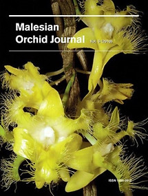 Malesian Orchid Journal Vol 6 (2010) - Jeffrey J Wood (ed)