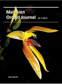 Malesian Orchid Journal Vol 7 (2011) - Jeffrey J Wood (ed)