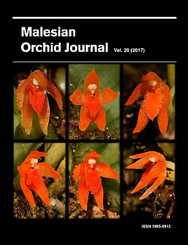 Malesian Orchid Journal Vol 20 (2017) - Andre Schuiteman (ed)