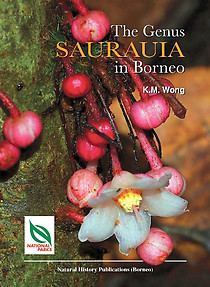 The Genus Saurauia in Borneo - Andre Schuiteman (ed)