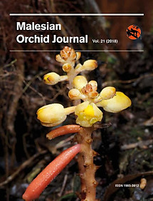 Malesian Orchid Journal Vol 21 (2018) - Andre Schuiteman (ed)