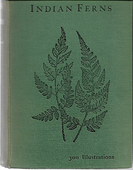Handbook to the Ferns of British India, Ceylon and the Malay Peninsula with Supplement - RH Beddome