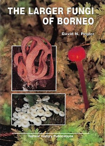 The Larger Fungi of Borneo - David Pegler