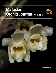 Malesian Orchid Journal Vol 22 (2018) - Andre Schuiteman (ed)
