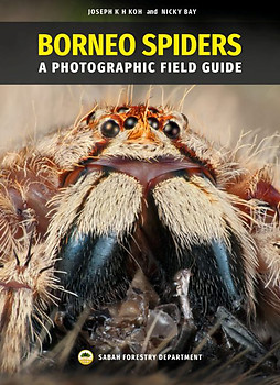 Borneo Spiders: A Photographic Field Guide - Joseph KH Koh & Nicky Bay