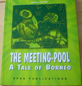 The Meeting Pool: A Tale of Borneo - Mervyn Skipper